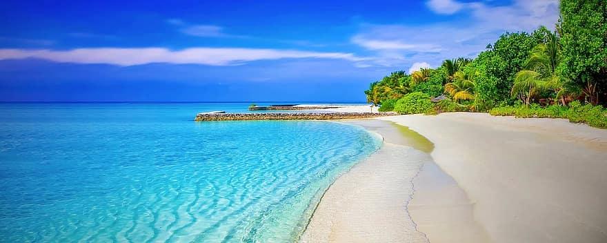 proteger las playas
