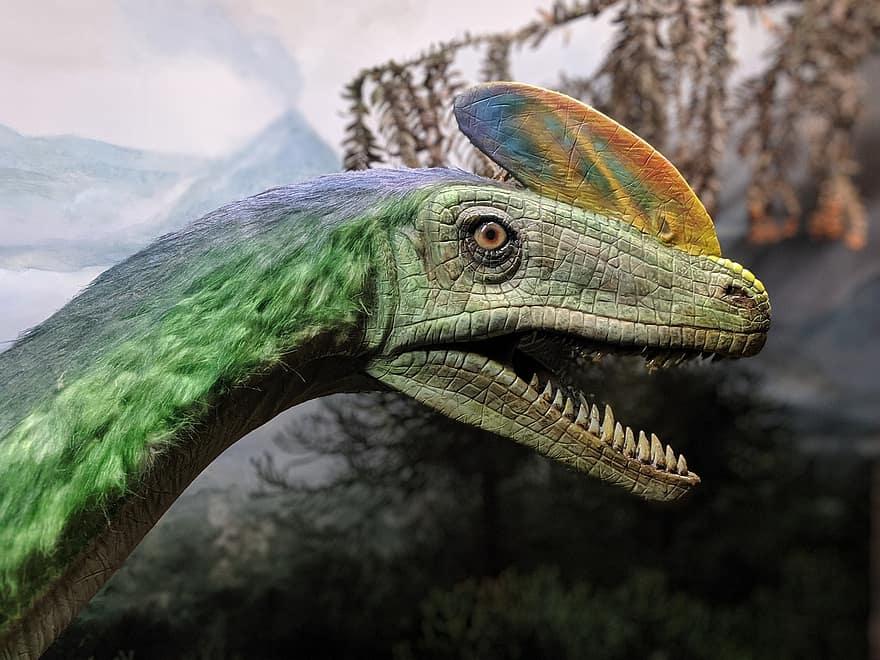 dinosaurios con plumas, el diseño de las plumas