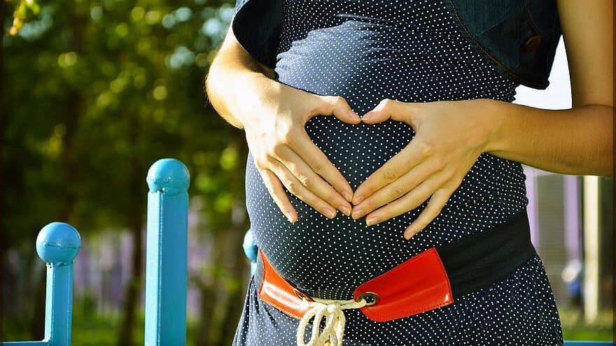vacuna de la gripe durante el embarazo