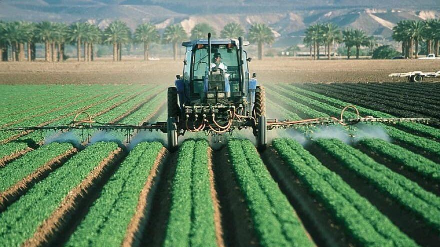 libre comercio puede prevenir el hambre