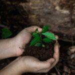 Hacer con enzimas que el plástico sea compostable